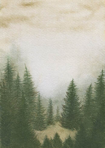 Pine forest - watercolour illustration by Margeaux Davis